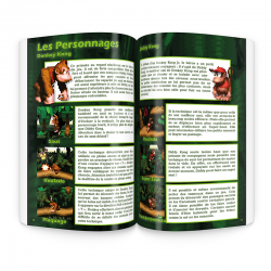 Guide Complet Donkey Kong Country persos